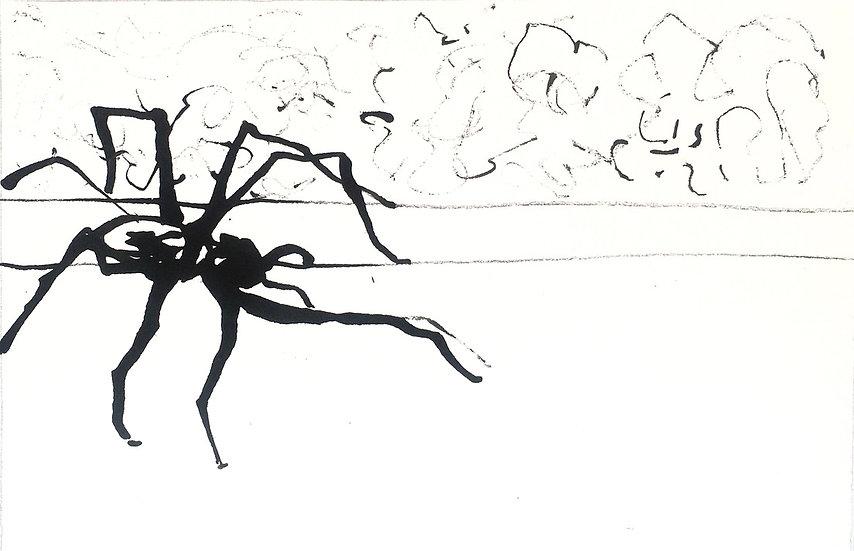Spider in the Corner