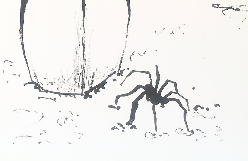 Spider on the Carpet