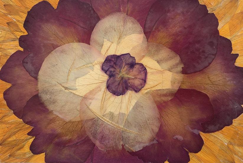 Flower Petal Pattern