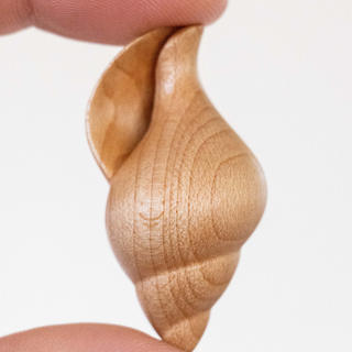 Maple Shell