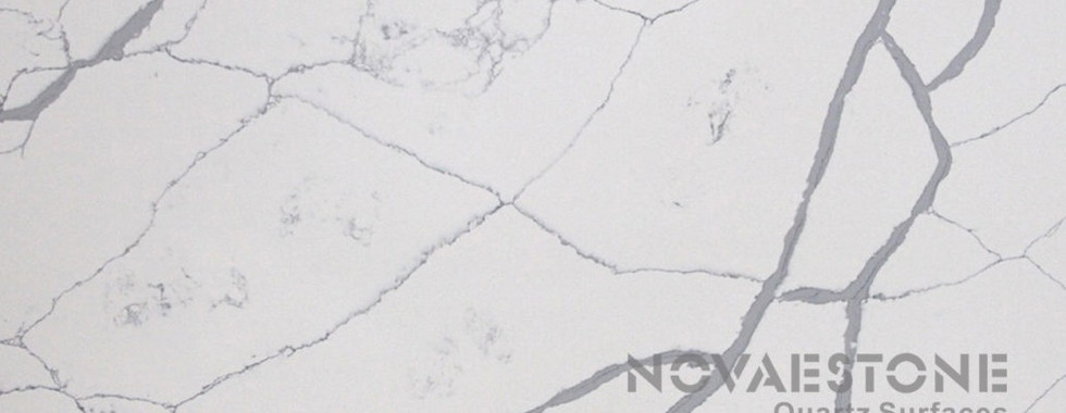NV916-1030x515.jpg