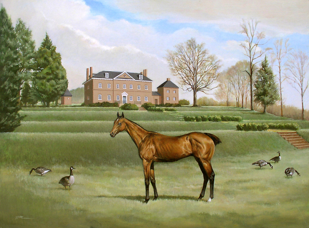Race Horse Selima by William Wilson