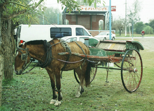 Type of Sulky Originally Used in English Harness Racing