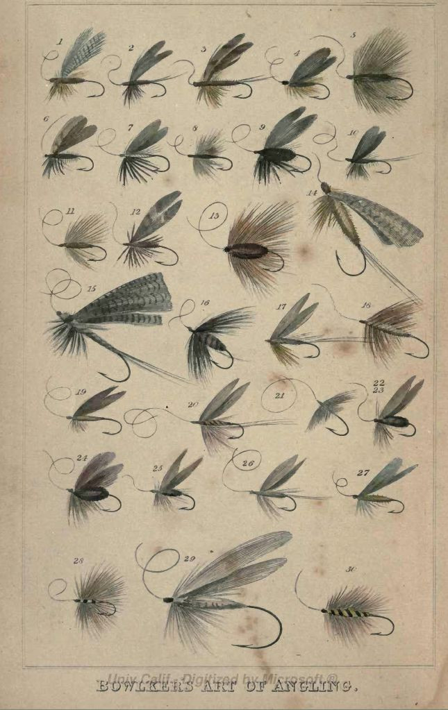 Frontispiece to Bowlkin's Book Showing Some of the Flies