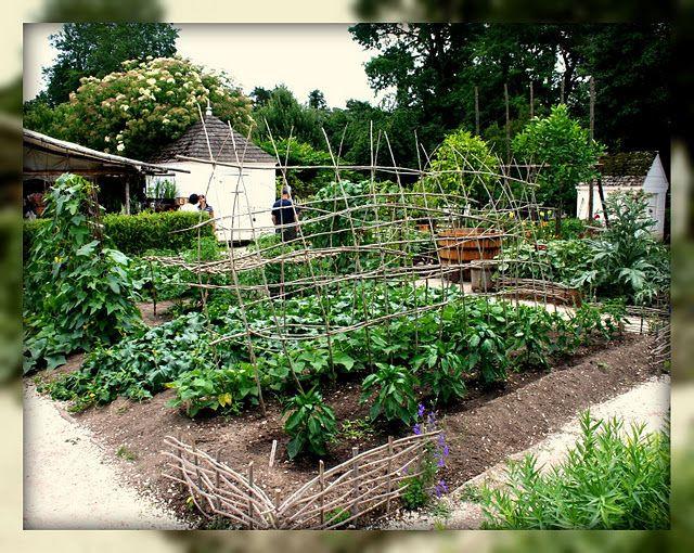 An 18th C. Kitchen Garden (recreated)