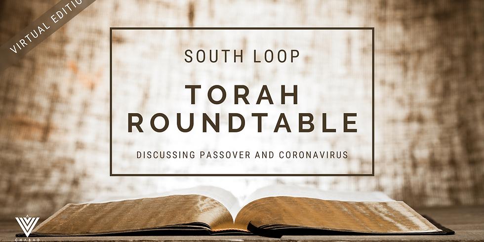 Torah Roundtable - Passover and Coronavirus Virtual Edition