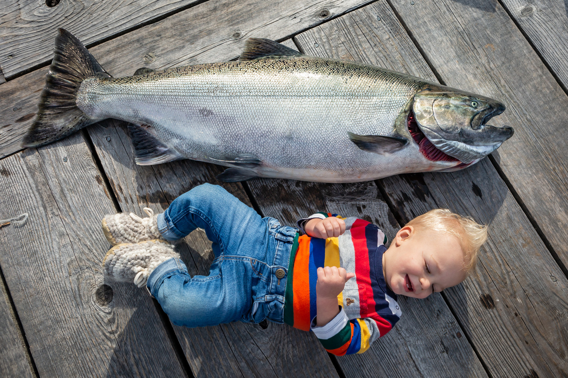 057_112118_VictoriaBC_Carroll_8908.jpg
