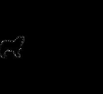 papilovit-logo-nero-sfondotrasparente.pn