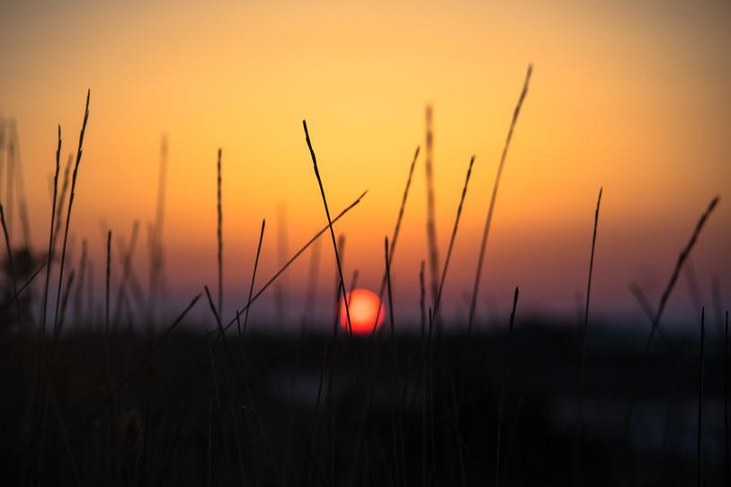 Sunset in Puglia
