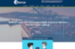 Lentus VP website development.png