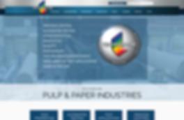 Technidyne website development.png