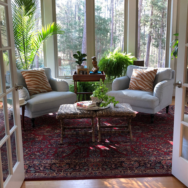 Sunroom with Traditional Rug and plants
