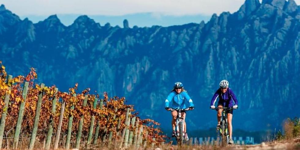BIKE & WINE - Pantà de Foix + Penedes WINE TRIP + BEACH🍷🍇