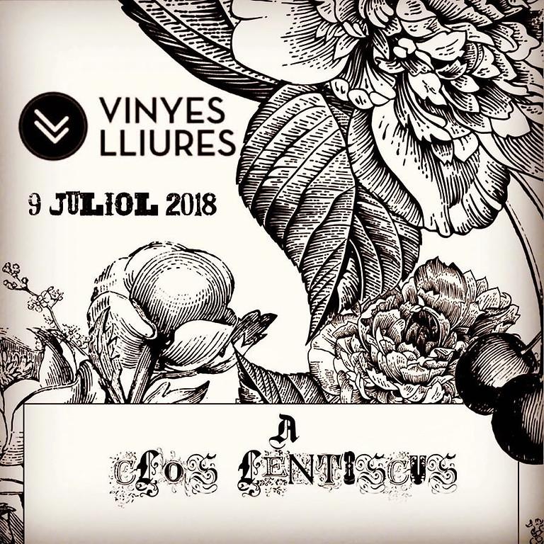 Winery visit to Clos Lentiscus - Private Summer Wine Festival in Penedés
