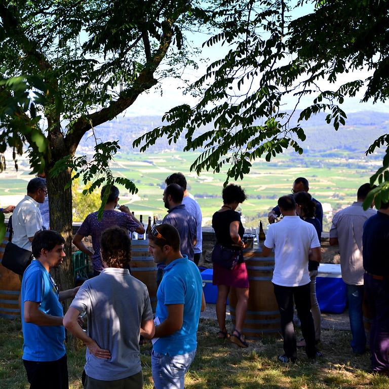 La cimera dels Xarelos - Views, live music and Xarelo wines!