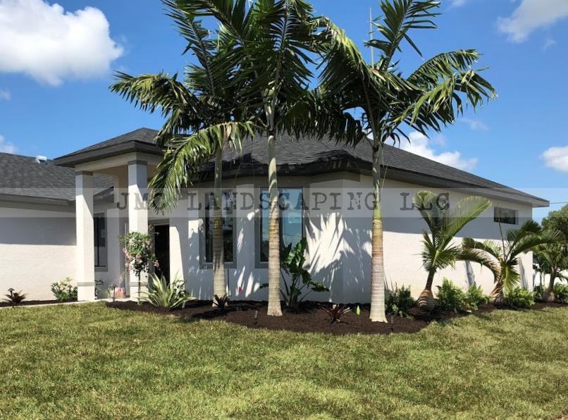 Montgomery palms in landscape