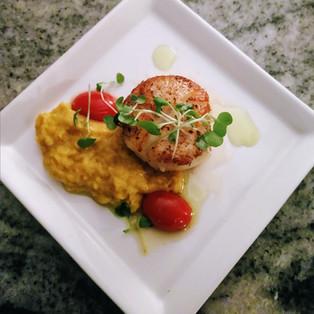 seared scallop, curry creamed corn, tomato, mustard greens, cilantro oil