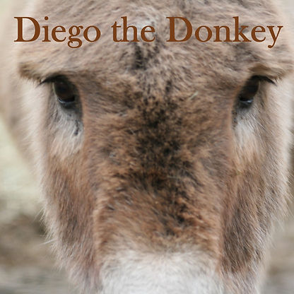 Diego the Donkey front cover.jpg