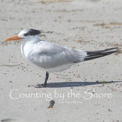 Counting at the Shore Cover.jpg
