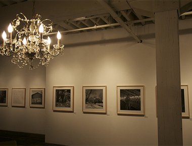 The Roost Gallery