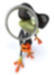 FrogSpy.jpg