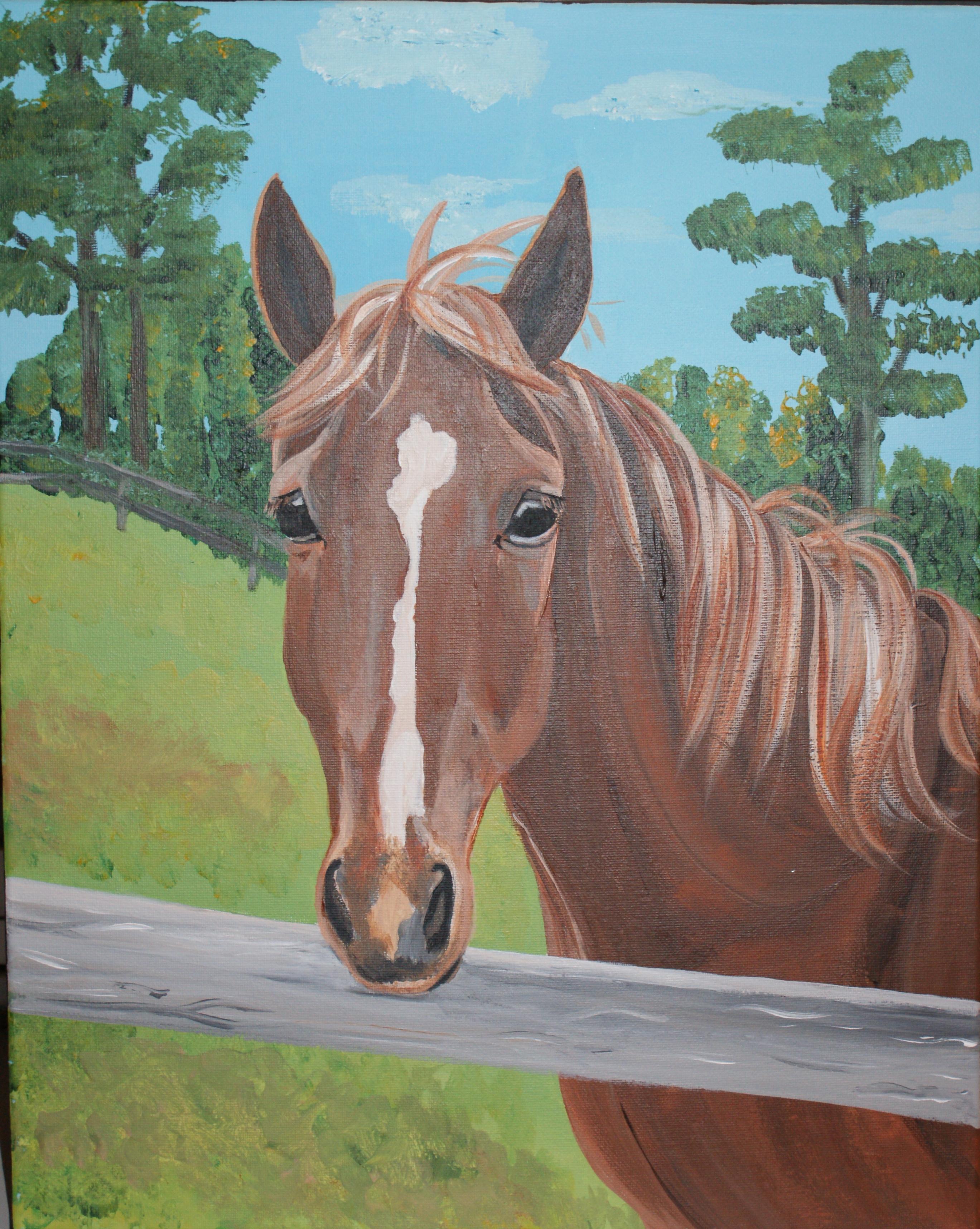 Horse for Evvyn