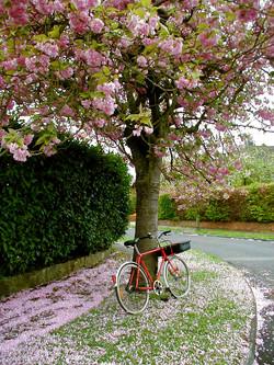 Mailman's bike, England