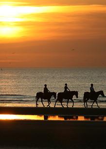 sunset ride.jpg