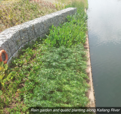 On course to improving water quality in Singapore