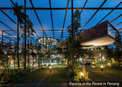 Factory in the Forest in Penang