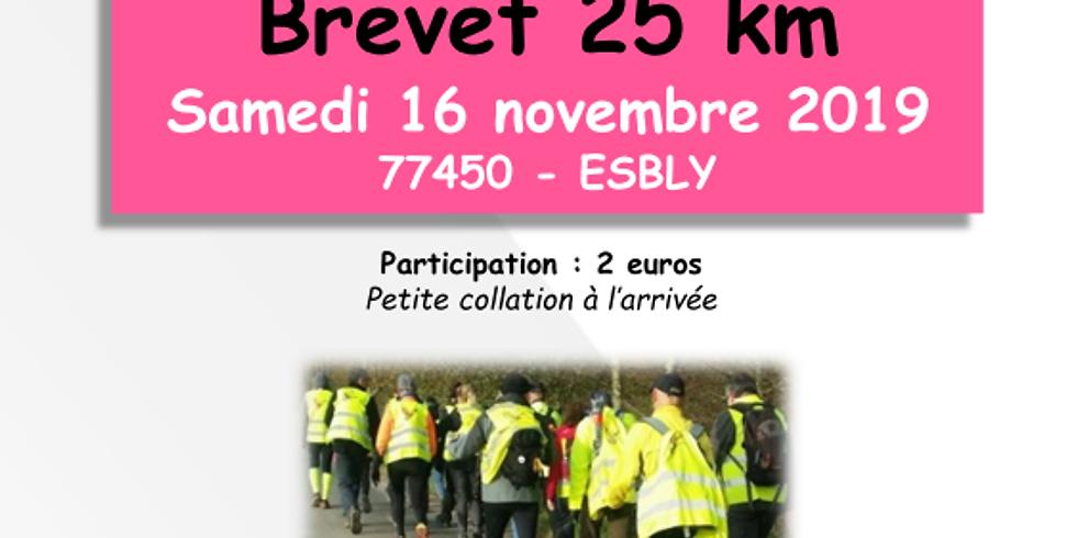 Brevet 25 km ESBLY