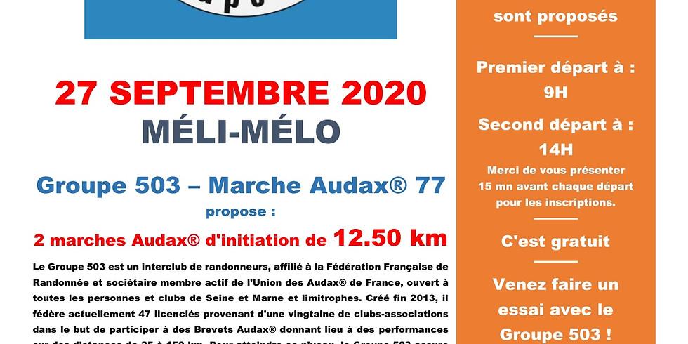MELI-MELO 2020