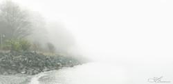 Fog in Port Angeles
