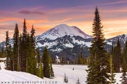 Mt. Rainier in June