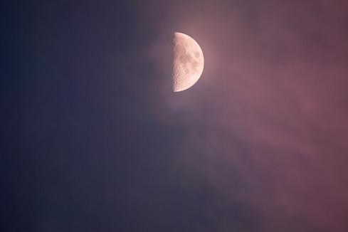 Half Moon, pink, blue, danielle w press, moonrise, moon rise, moonlight, photography, sky,