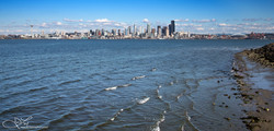 Seattle from Afar