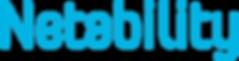 Netability_Logo_.png