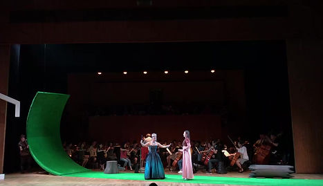 der hölle Rache, with Opera Hong Kong