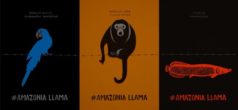 AMAZONIA LLAMA - Alfredo soderguit - Uru
