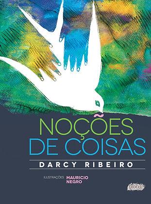 Noções de coisas (Darcy Ribeiro e Maurício Negro)