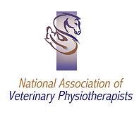 NAVP logo.jpg