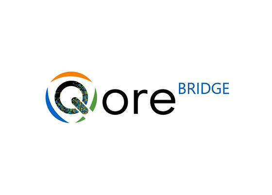 QORE BRIDGE
