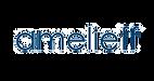 logo_amerieff.png