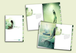 Old Mutual Oxygen Brochure