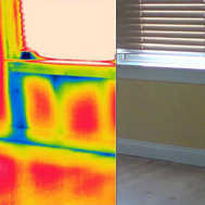building and pest thermal inspections sydney