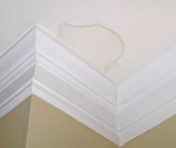 apartment bathroom leak inspection sydney