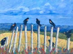 Bye Bye Blackbirds 34 x 40 $850