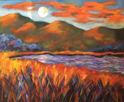 Moon 20 x 24 Acrylic $480