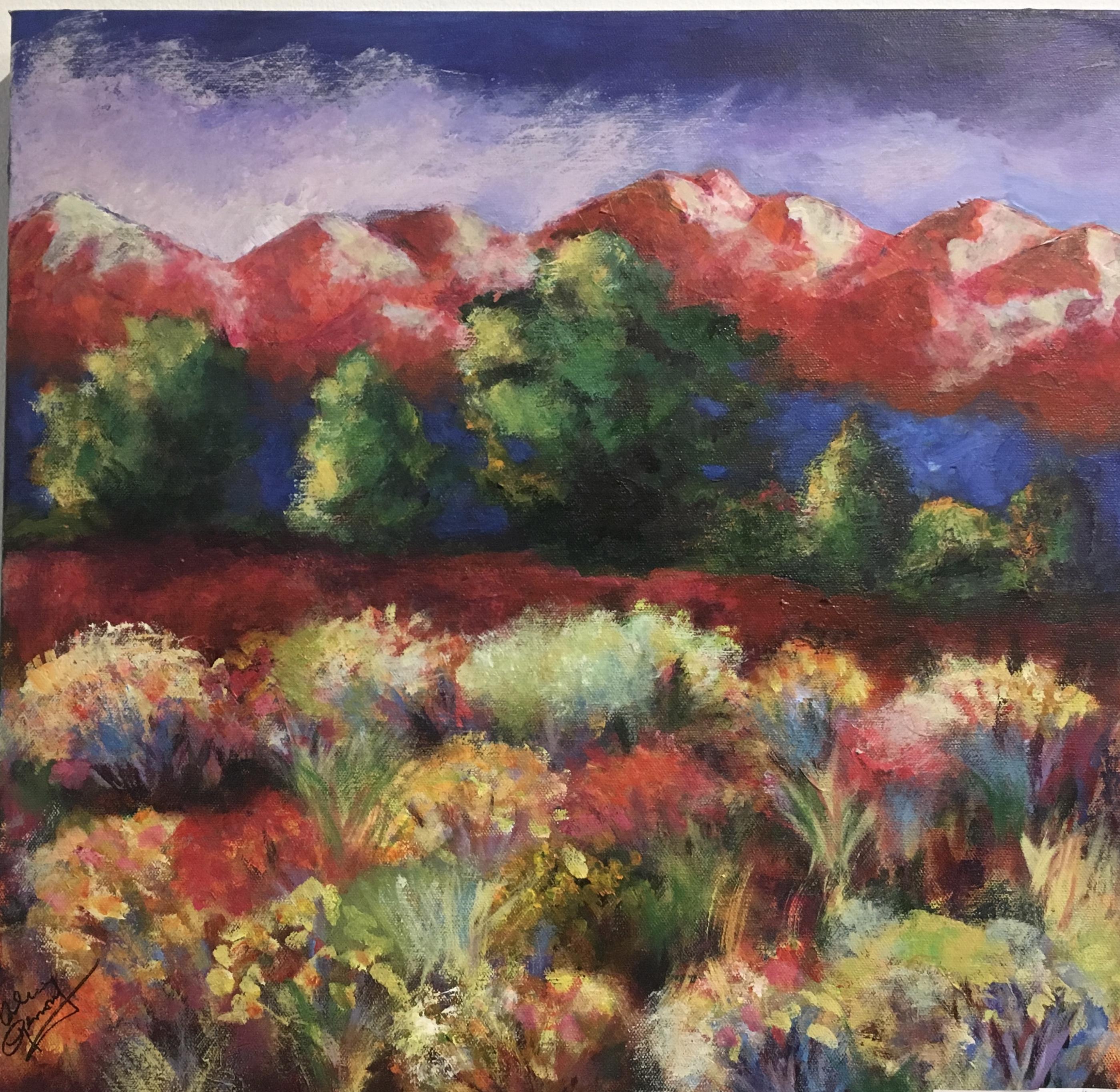 Spring in Colorado 20 x 20 $325