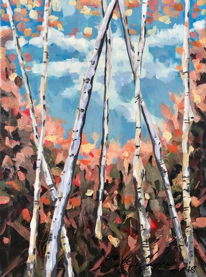Aspen Grove Fall